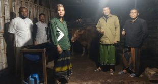 Ketua PCNU Kota Denpasar Mengunjungi Pertenakan Sapi Tanpa Ngarit